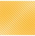 Orange Striped Background vector image