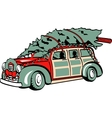 Xmas Tree on Sedan vector image