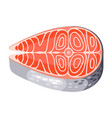 salmon steak isolated of seafood on vector image vector image