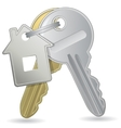 an illustration of a bunch of keys with a tag vector image