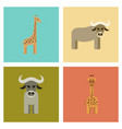 assembly flat icons nature giraffe bull vector image