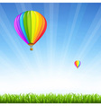 Grass And Two Hot Air Balloons vector image