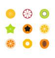 cut fruit icon set vector image