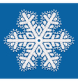 Lacy snowflake vector image vector image