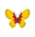 beautiful butterfly icon flat style vector image