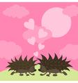 hedgehogs vector image vector image