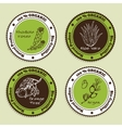 Set of Natural Organic Product badges vector image vector image