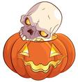 Skull and Pumpkin vector image
