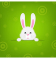 Easter Banner With Rabbit vector image