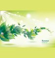 abstract summer background with green leaves vector image