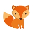 cute fox isolated icon vector image