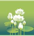 tender elegant white water floral for invitation vector image
