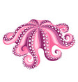 octopus isolated of seafood on white vector image