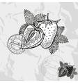 Hand drawn decorative strawberries vector image