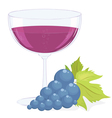 full glass of wine and a brush of dark grapes vector image