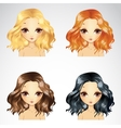 Curly Fluffy Hairstyle Set vector image