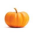 bright orange realistic pumpkin isolated on vector image