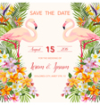 Wedding Card Tropical Flowers Flamingo vector image