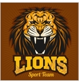 Lions - sport team logo template Lion head on the vector image