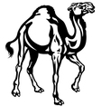 camel black white vector image vector image
