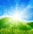 Meadow with sun and blue sky vector image vector image