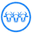 cattle rounded grainy icon vector image
