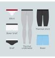 Man underwear icons vector image