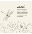 Lotus flower and dragonfly vector image vector image