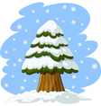 spruce in the snow vector image