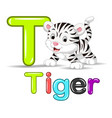 cute baby white tiger vector image