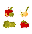farm products - apple bulb onion cabbage tomato vector image