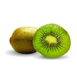 Kiwi on a white background vector image