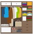 Men cloths wardrobe vector image