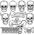 Skulls of various designs vector image
