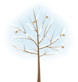 stylized winter tree vector image