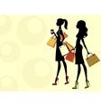Chic women shopping vector image