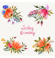 Watercolor flowers set Colorful floral collection vector image
