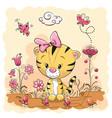 cute cartoon tiger on a meadow vector image