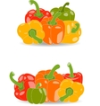 Pepper set of yellow red green and orange vector image