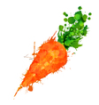 Carrot made of colorful splashes vector image
