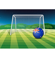 A soccer ball at the field with the New Zealand vector image