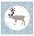 Christmas card reindeer blue vector image