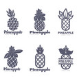 set of black and white graphic pineapple logo vector image vector image