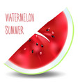 piece of watermelon vector image