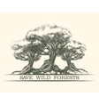Save Wild Forests vector image