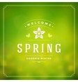 Spring Typographic Poster or Greeting Card vector image