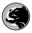 Sport Pattern monochrome logo with bear vector image