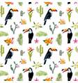 Tropical Background Toucan Bird Cactus vector image