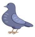 Dove icon cartoon style vector image