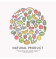 Linear icons of vegetables and fruits vector image